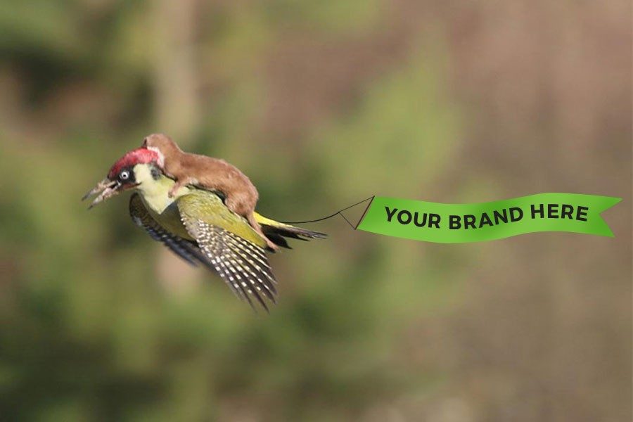 Make your brand viral: Get free brand exposure with these tips!